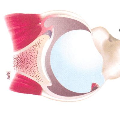 Как вылечить болячку в ухе